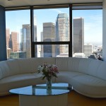 1100 Wilshire Living Room Shot