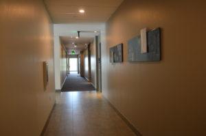 Wren hallways